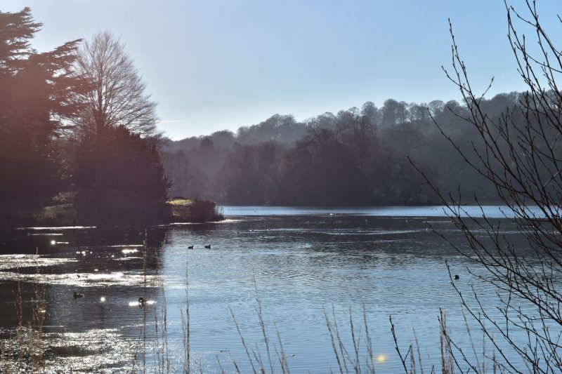A day out in Staffordshire at Trentham Gardens: fun for all the family