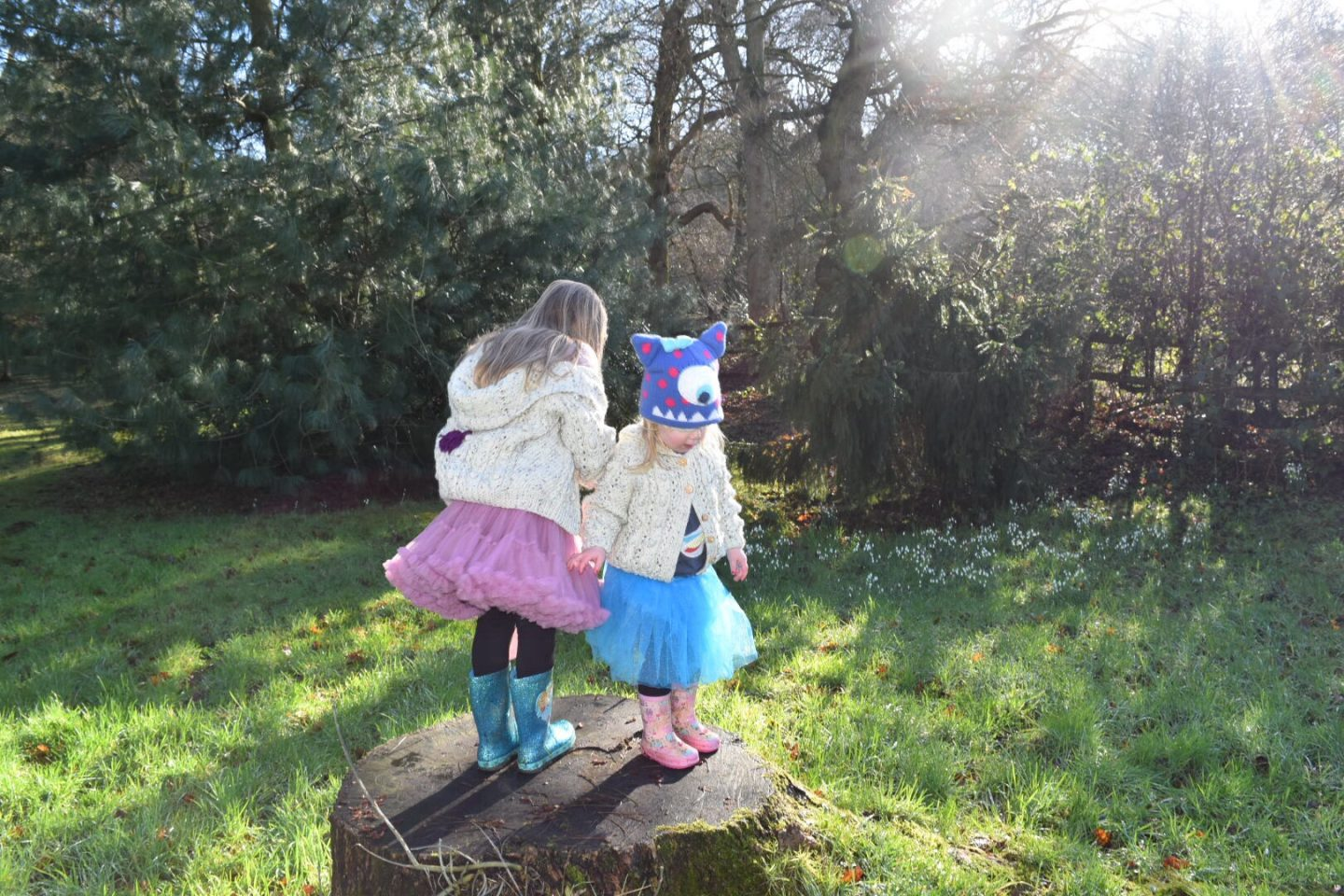 Half-term fun in Cheshire – Building dens, puddle jumping and snowdrop walks