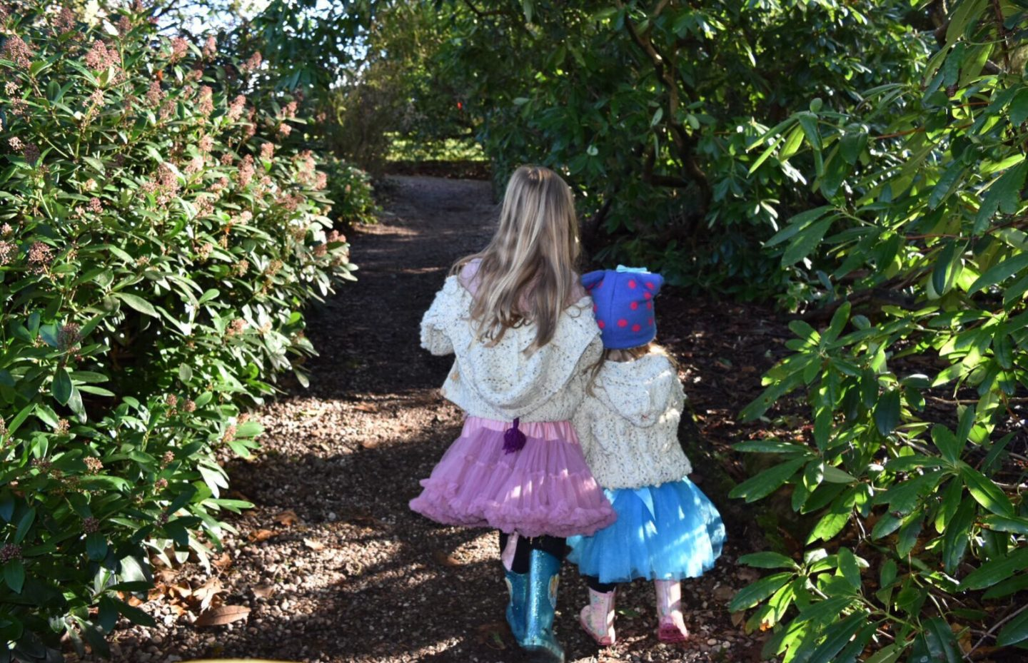 Family Day Out -Sunshine and Snowdrops on a Saturday – Rode Hall & Gardens, Cheshire