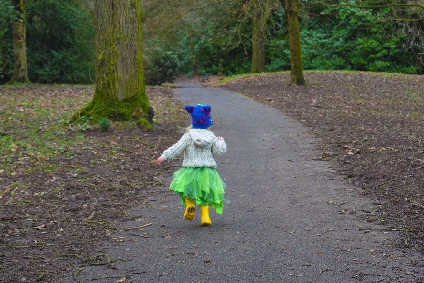 Dodging The Rain for a Woodland Walk