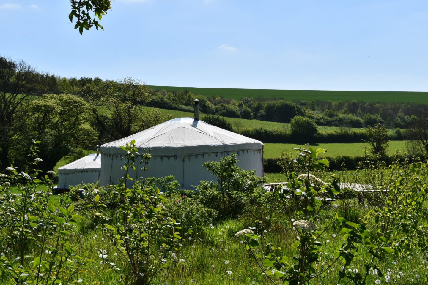 Glamping at Green Valley Yurts, Dorset