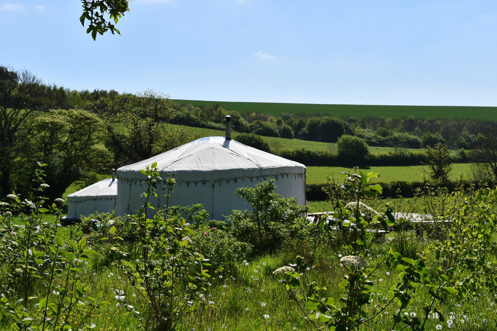 Dorset glamping : A stay in a yurt at Green Valley Yurts