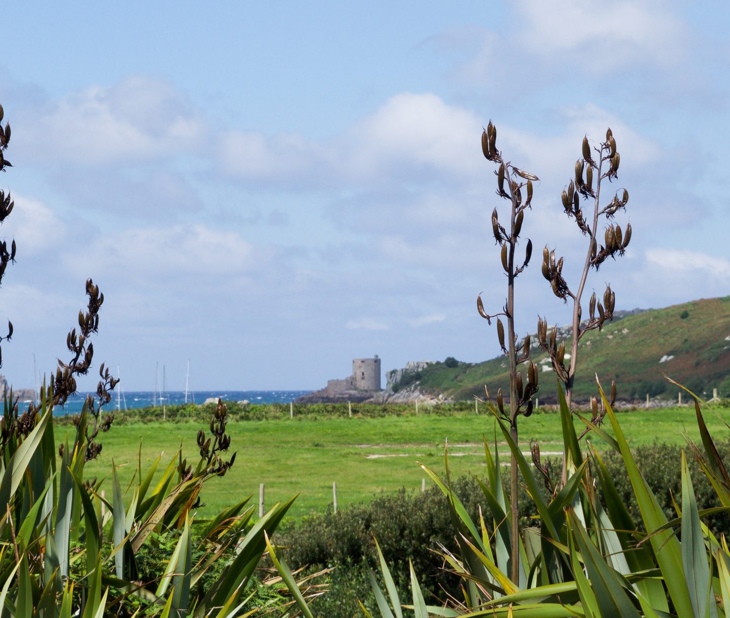 reasons to visit Isles of Scilly including beaches, views and incredible food