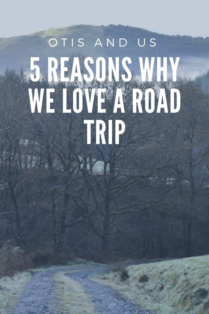 reasons why we love a road trip
