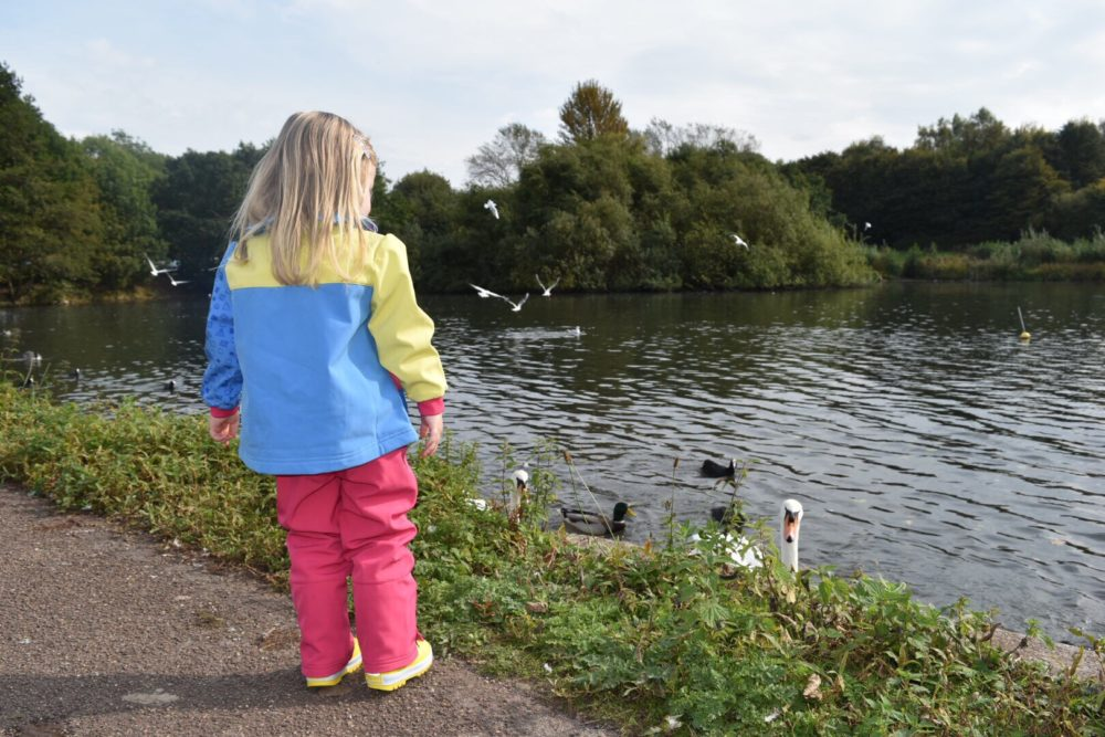 Westport lake is a top family day out in Staffordshire