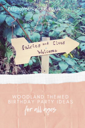 woodland theme birthday party ideas